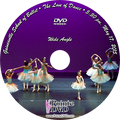 Gainesville School of Ballet 2015 Recital: 5:30 pm Sunday 5/17/2015 Wide Angle Only DVD