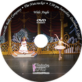 Gainesville Ballet The Nutcracker 2015: Saturday 12/5/2015 7:30 pm Wide only DVD