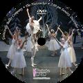 Gainesville Ballet The Nutcracker 2015: Sunday 12/6/2015 2:00 pm Edited DVD