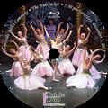 Gainesville Ballet The Nutcracker 2015: Saturday 12/5/2015 7:30 pm Edited Blu-ray