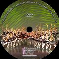 Perimeter Ballet A Decade of Dance 2016: Saturday 4/16/2016 11:00 am DVD