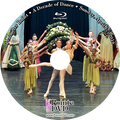 Perimeter Ballet A Decade of Dance 2016: Sunday 4/17/2016 3:00 pm Blu-ray