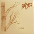 CURSILLISTAS~LES BICHES-ACID FOLK PSYCH POP-NEW CD