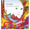 Ciccada-The finest of miracles-GREEK PROG FOLK ROCK-NEW LP