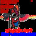 "25044  Bird (Rainbow) 21"" : Petite & Whirly Wing Spinner (25044)"