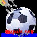 """99502  13"""" Soccer Ball only (99502)"""