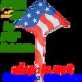 33062  Patriotic: Delta Sky Kites by Premier (33062)