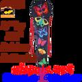 43041  Rainbow of Butterflies : Dragon & Octopus (43041)