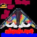66155  Tie Dye: Zoomer Sport Kites by Premier (66155)