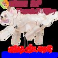 "21888  Dog FRENCH BULLDOG 15"" : Whirligig Wing Spinner (21888)"