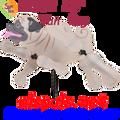 "21892  Dog TAN PUG 15"" : Whirligig Wing Spinner (21892)"