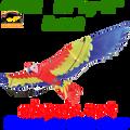 44772  Parrot : Bird Kite (44772)