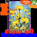 56142 Buttercups Welcome : PremierSoft Garden Flag (56142)