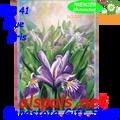 57141 Blue Iris : Illuminated House Flag (57141)