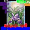 56141 Blue Iris : PremierSoft Garden Flag (56141)