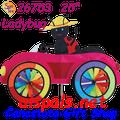 26753  Ladybug : Car Spinners (26753)