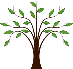 whispy-tree-md.png