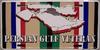 License Plate, Persian Gulf Veteran