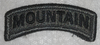 ACU Patch, 10th MT Division Tab
