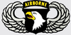 Decal, 101st Airborne Wings
