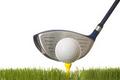 2013 4A State Golf Championships-NMSU
