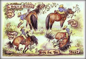 4 Rules of Riding - Funny Horse Cards | Jude Too - Lesley Bruce