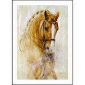 Horse Card: Beautiful Chestnut Dressage Horse # DC25