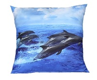 Dolphins Square Filled Cushion