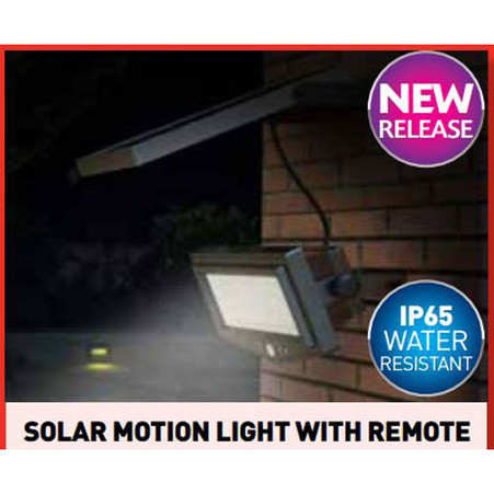 Solar Motion Light with Remote