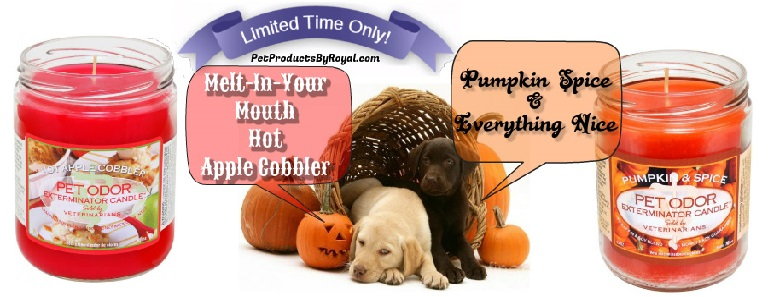 Autumn Fragrances Now Available!
