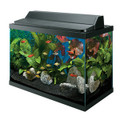 AQUEON 20H Gallon Deluxe Aquarium Complete Kit - AG17760