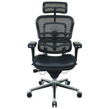 Ergohuman Chair Mesh Combo LEM4ERG