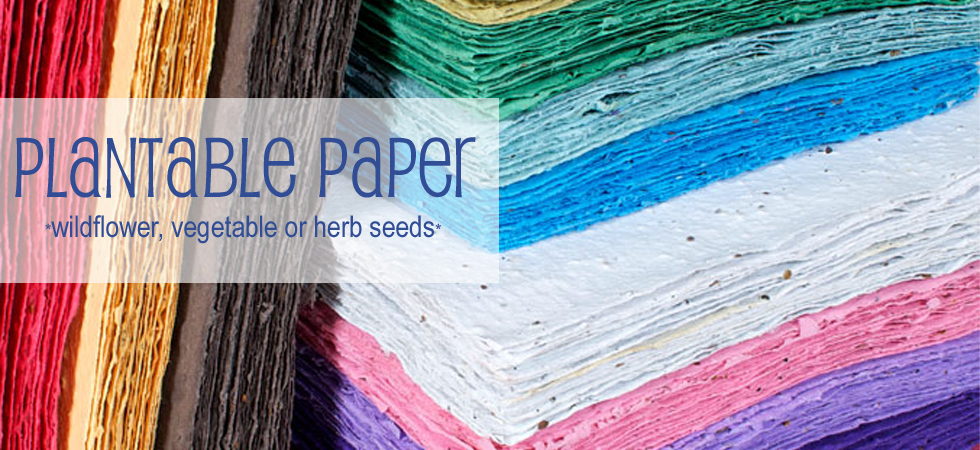 Plantable Paper DIY Seeded Paper Sheets
