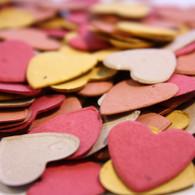 """Autumn Breeze"" Heart Shaped Plantable Confetti Set"