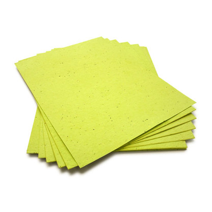 "Lime Green Plantable Wildflower Seed Seeded Paper Sheets - 8.5"" x 11"""