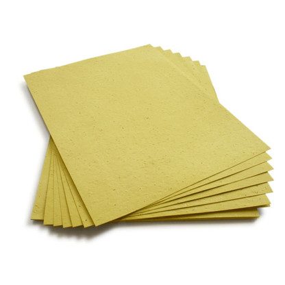 """Olive Green Plantable Wildflower Seed Seeded Paper Sheets - 8.5"""" x 11"""""""