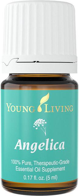 Angelica Therapeutic Grade Essential Oil 5ml Bottle