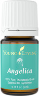 Angelica Essential Oil 5ml Bottle - Young Living