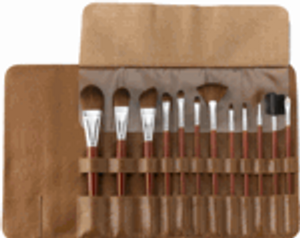 13pc VEGAN Professional Brush Set