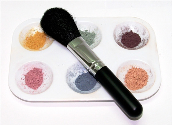 Lrg 62pc Salon & Spa Wholesale Mineral Makeup Sample Kit