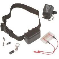 DT Systems Mini No Bark Collar