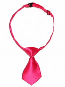 Dark Pink Shiny Dog Neck Tie