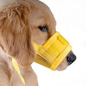 Yellow Mesh Dog Muzzle