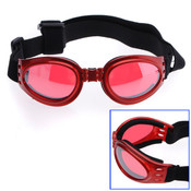 Red Dog Sunglasses