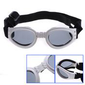 White Dog Sunglasses