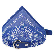 Dark Blue Paisley Dog Bandana Collar