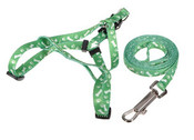 Green Bones & Paws Design Dog Harness & Lead Set