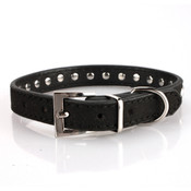 Black Rhinestone Studded Dog Collar