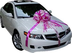 car-bows-large-bows.png