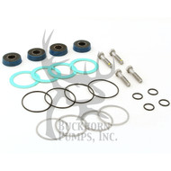 P503034 - PACKING KIT; E0411, W/  HSN PISTON CUPS
